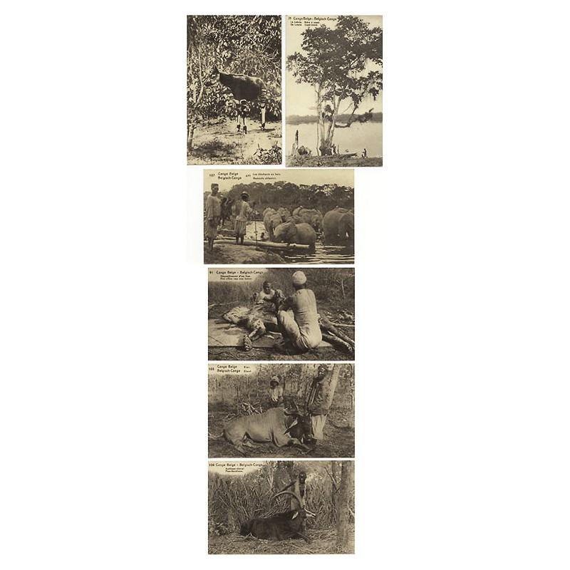Congo Belge - Belgisch Congo: Belgisch Kongo: 6 Ansichten in Lichtdruck (ca. 1922)
