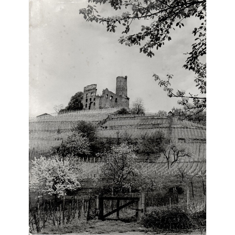 RETZLAFF, Erich: Ruine Strahlenburg bei Schriesheim. Original-Fotografie (1950er Jahre).