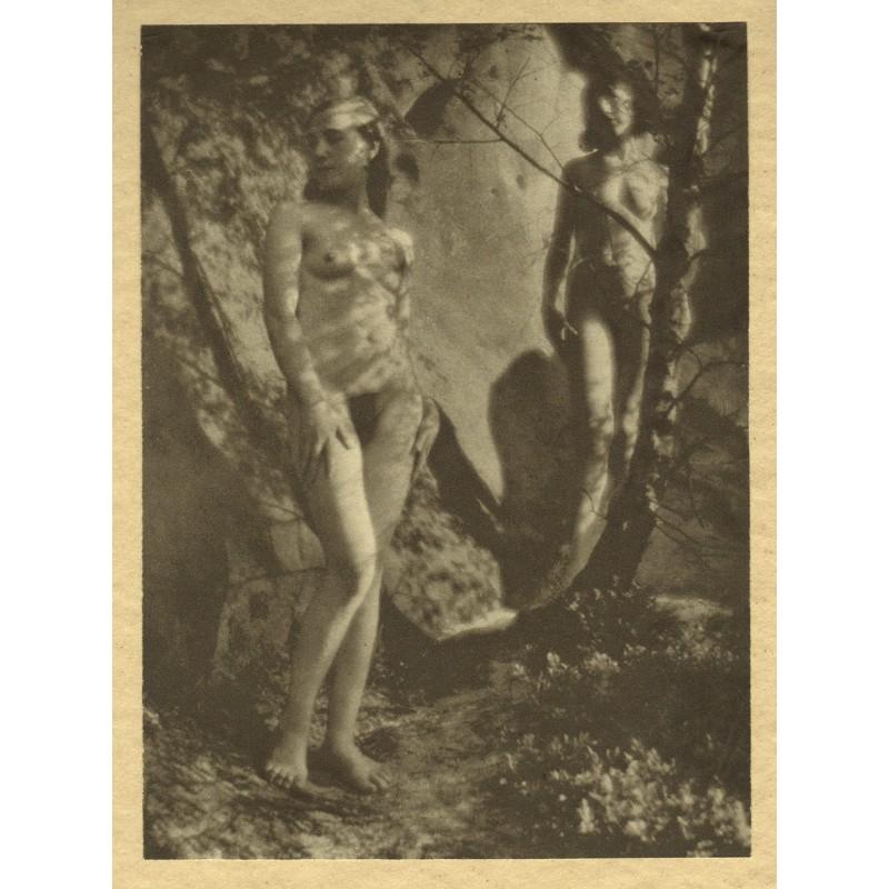 FIEDLER, Franz: Akt-Fotografie in Tiefdruck (1925).