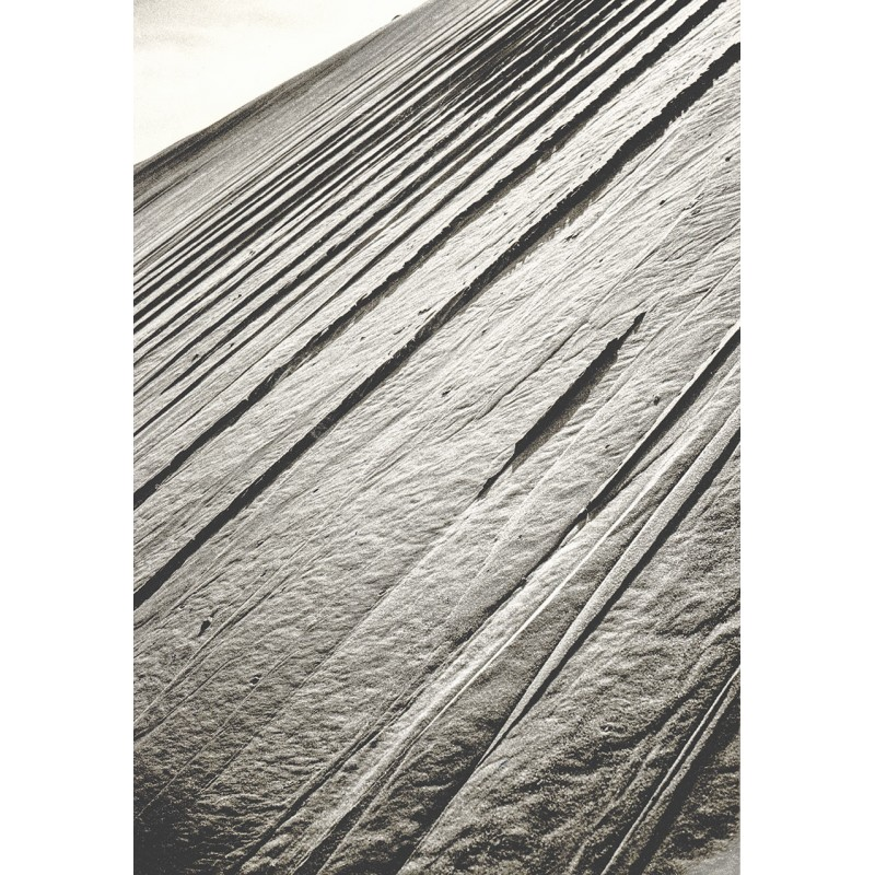 EHRHARDT, Alfred: Kurische Nehrung. Orginal Fotografie vom Original Negativ (1930er Jahre - Abzug aus den 1980er Jahren)