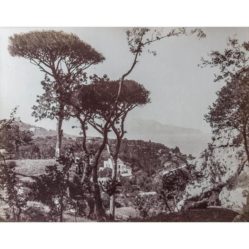 SOMMER, Giorgio: Capri da Massa. Original Fotografie. Albumin Abzug (ca. 1885).