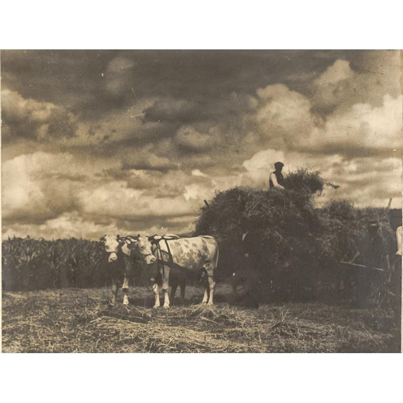 Impressionistsche Fotografie - VOGEL, Hermann: Heuernte. Original-Fotografie (1931).