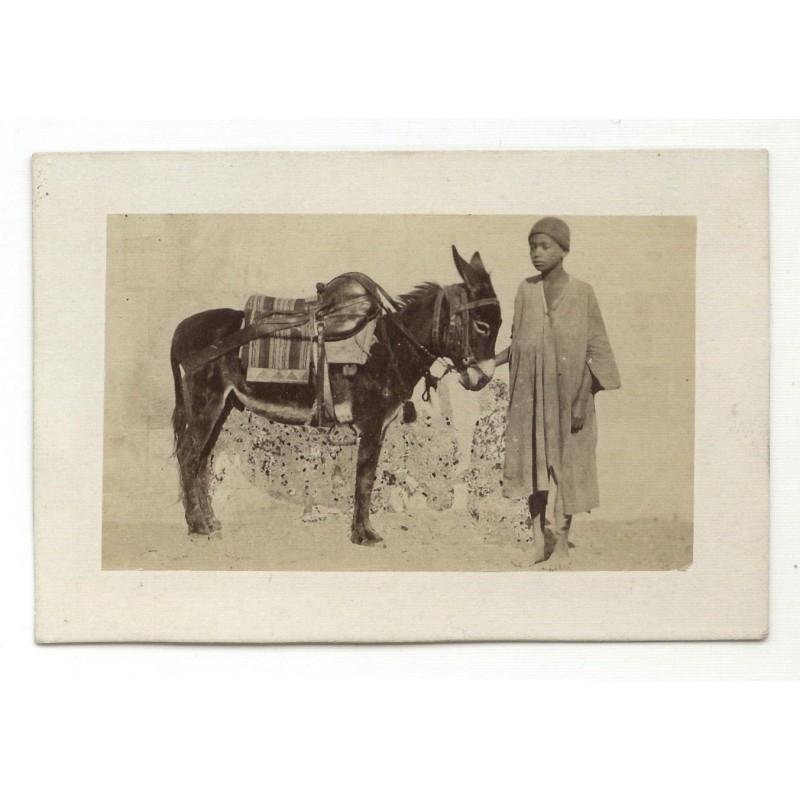 HAMMERSCHMIDT, Wilhelm: Maultiertreiber. Original-Fotografie - Albumin-Abzug (ca. 1865)