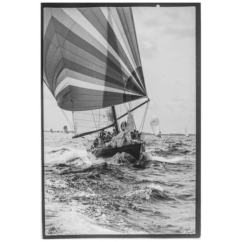 Yachtsegeln - Kieler Woche:- Neumann, Peter - Yps: Yacht Pinta in voller Fahrt. Original Fotografie.