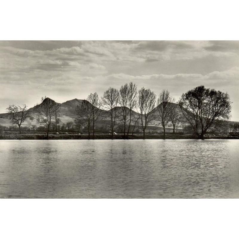 VOZENILEK, Zdenek: Landschaft mit Bäumen. Original-Fotografie (1979).